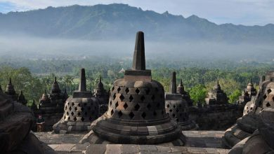 Photo of Naar de Birds Market en Borobudur in Yogyakarta
