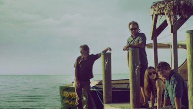 Photo of Netflix Original | Bloodline