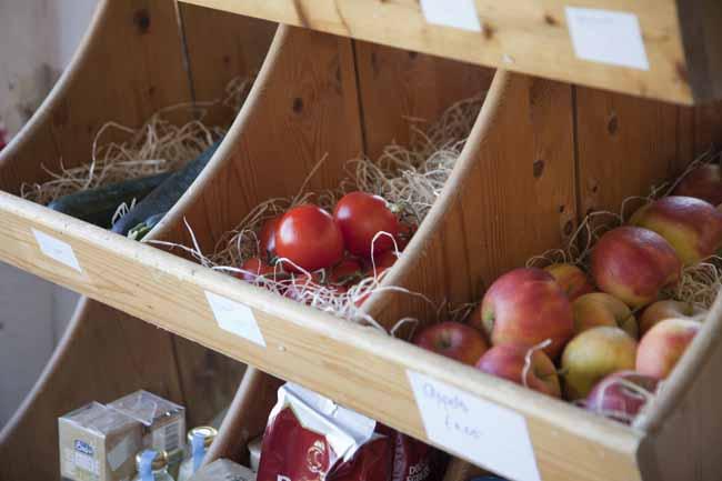 Logeren bij betere boerenbed - boederijwinkel