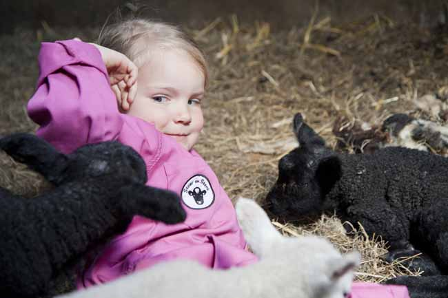 Kinderoverall Stoer en Sterk - logeren bij betere boerenbed