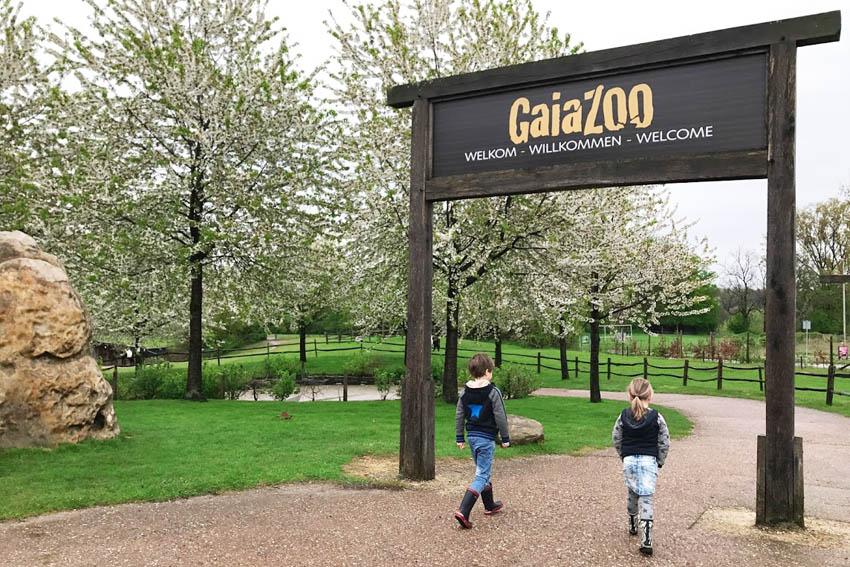 Op safari door de dierentuin met de GaiaZOO app - AllinMam.com