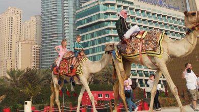 Photo of Naar Dubai met kinderen: wat kun je er allemaal doen?