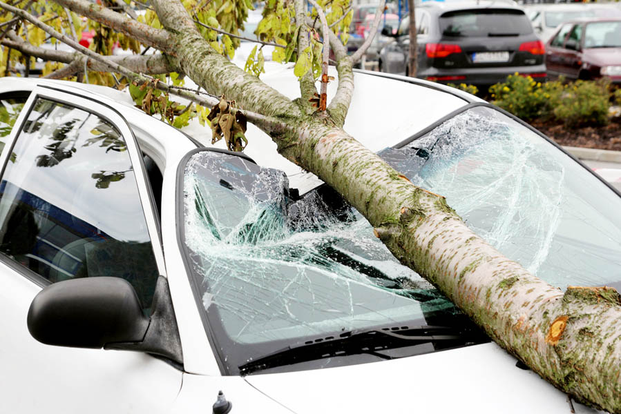 Wanneer van WA+ naar WA autoverzekering? - AllinMam.com