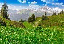 800 activiteiten met de Davos Klosters GuestCard - AllinMam.com