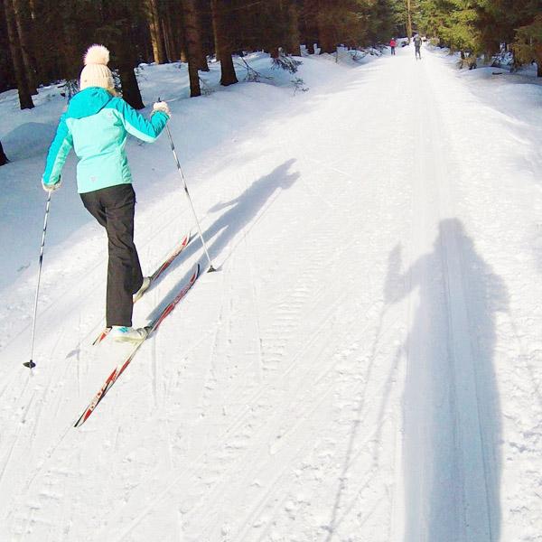 Langlaufen in Bedřichov - Liberec: combinatie stedentrip en skiën in Tsjechië - AllinMam.com