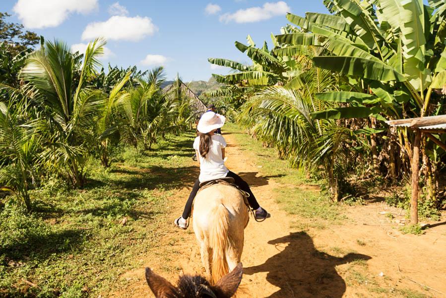 Paardrijden met kinderen op Cuba - Met kinderen naar Cuba: wat je niet moet missen - AllinMam.com
