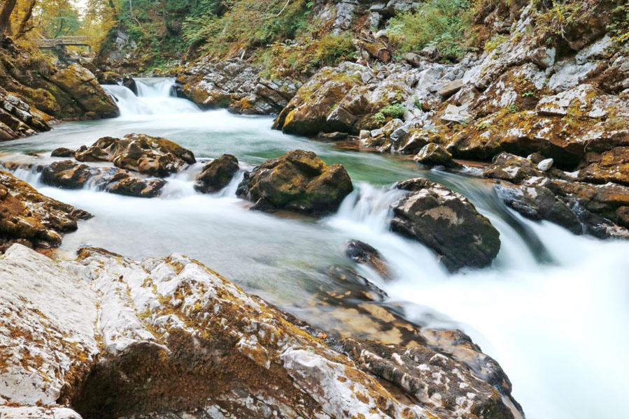 Must see in Slovenië: de prachtige Vintgar kloof - AllinMam.com