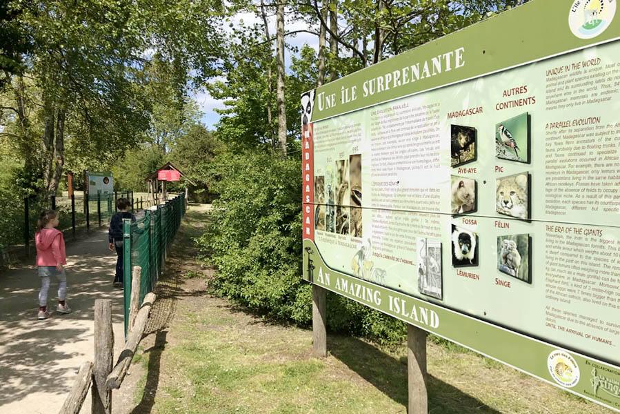Le Parc des Felins wildpark bij Parijs - AllinMam.com