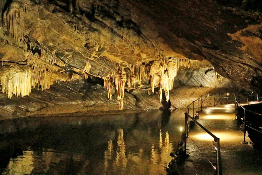 Wildpark Grotten van Han: nog onbekend maar een bezoek waard - AllinMam.com