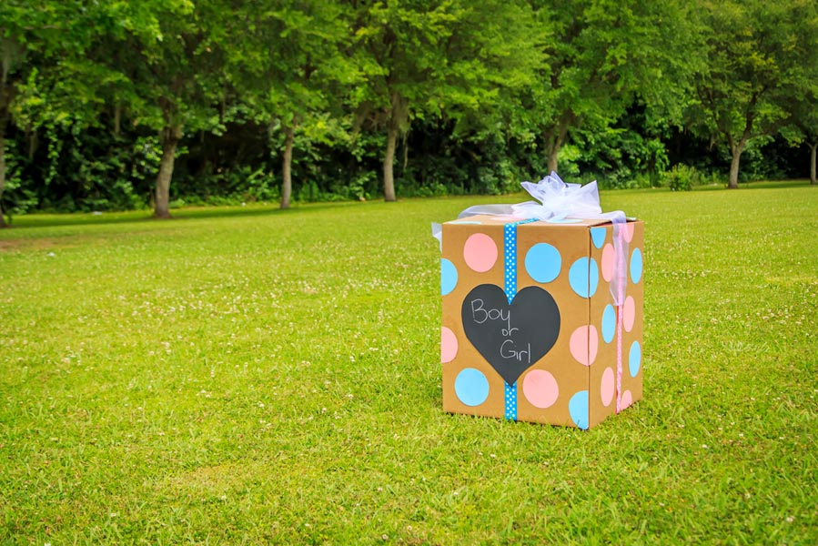 10 hippe gender reveal manieren - AllinMam.com