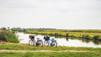 Fietsvakantie in Nederland: dit zijn de leukste locaties - AllinMam.com