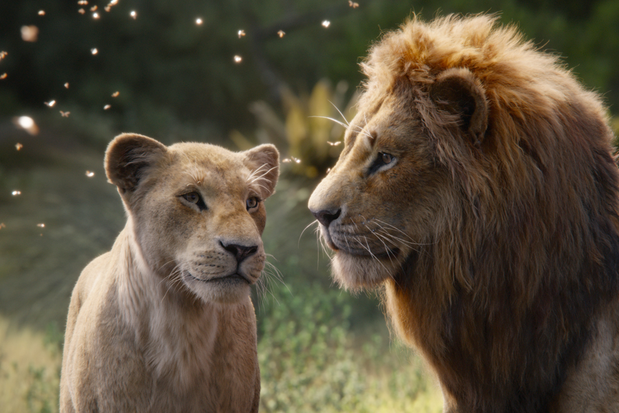 Must see The Lion King 2019 in Nederlandse bioscoop - AllinMam.com