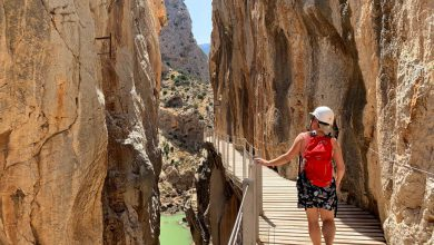 Photo of Twee wandelingen in Málaga die je zou moeten lopen