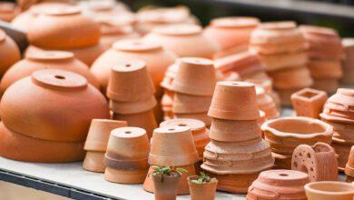 Wat terracotta met jouw planten doet - AllinMam.com